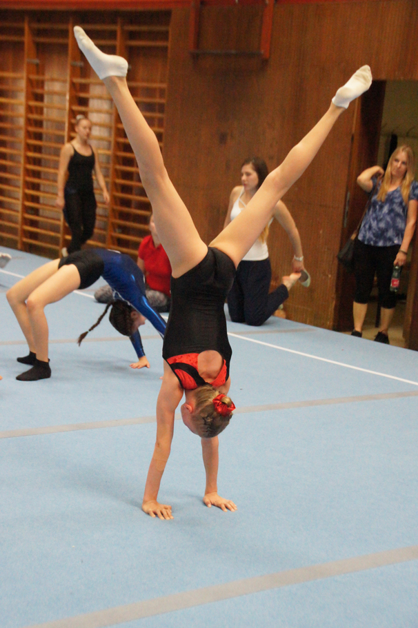 SV_Gymnastics_Fotos_Club_0230
